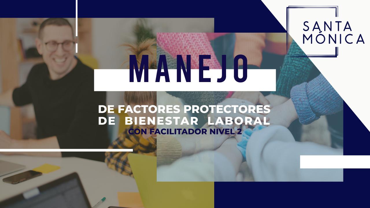 Manejo de factores protectores de estrés y promoción del bienestar laboral  NIVEL-2